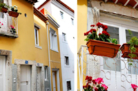 Alfama Yellow House